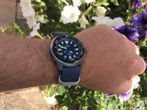 Blue leather nato on Seiko Sun